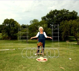 A Texas tomato cage that folds up quite easily for storage!