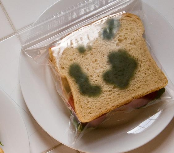 Anti-Theft Lunch Bags
