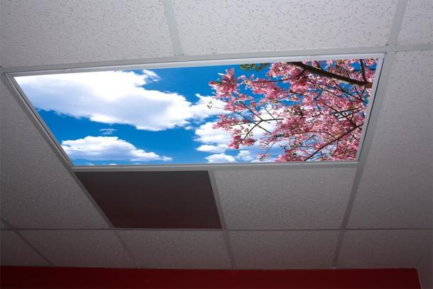 How to Cut Hard Plastic Ceiling Panels Home Guides SF Gate