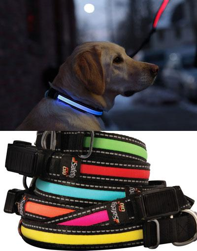 LED Rechargeable Dog Leash