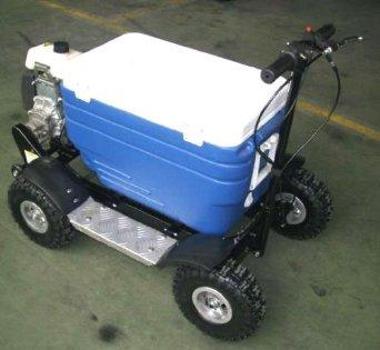 Motorized Cooler Scooter