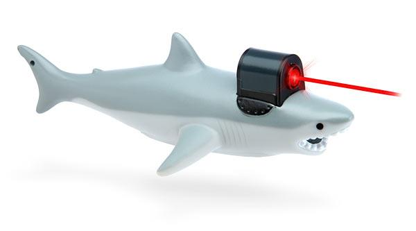 Shark With Frickin Laser Pointer The Coolest Stuff Ever