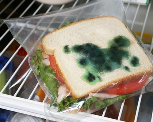 Theft Deterrent Moldy Sandwich Bags