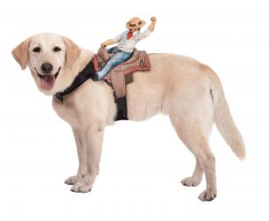 Riding Cowboy Dog Costume