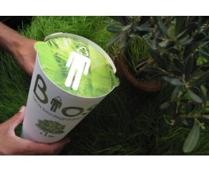 Biodegradable Urn Tree