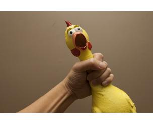 The Classic Rubber Chicken