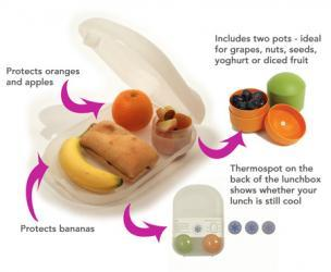 "Concentrate ""Food For Thought"" Smart Lunchbox"