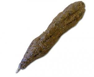 Turd Pen
